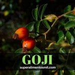 Goji berry - Bayas de Goji