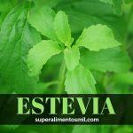 ESTEVIA