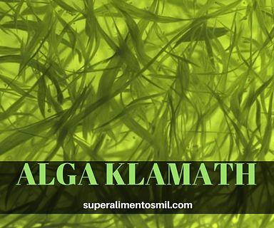 ALGA KLAMATH